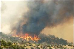 Incendie dans les Montagens San Bernardino en Californie, le 14 juillet 2006 - ©AFP/Getty Images - Jamie Rector